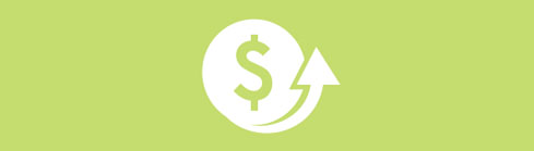 dollar sign icon - pay structure