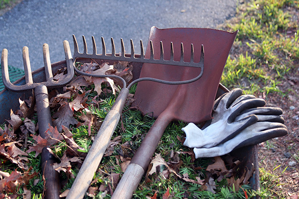 landscape tool for fall yard cleanup