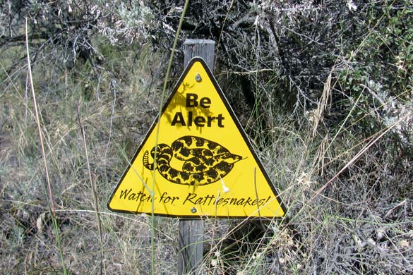 Be Alert - Watch for Rattlesnakes Sign