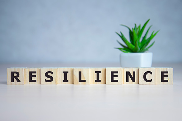resilience word concept on cubes plant in background